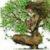 Рисунок профиля (Dalet)